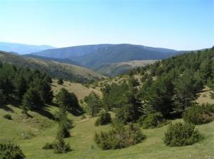 El barranc de Cubell en els seus inicis (Alt Urgell, Països Catalans)