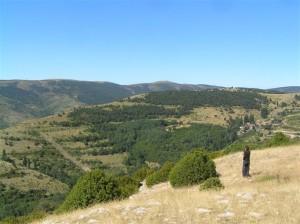 Baixant a Vila-rubla per serrat de Pratprimer (Alt Urgell, Països Catalans)