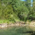 Petit estany al torrent de Comalada (Alt Urgell, Països Catalans)