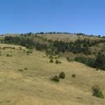 Serrat de Llacunes des del coll (Alt Urgell, Països Catalans)